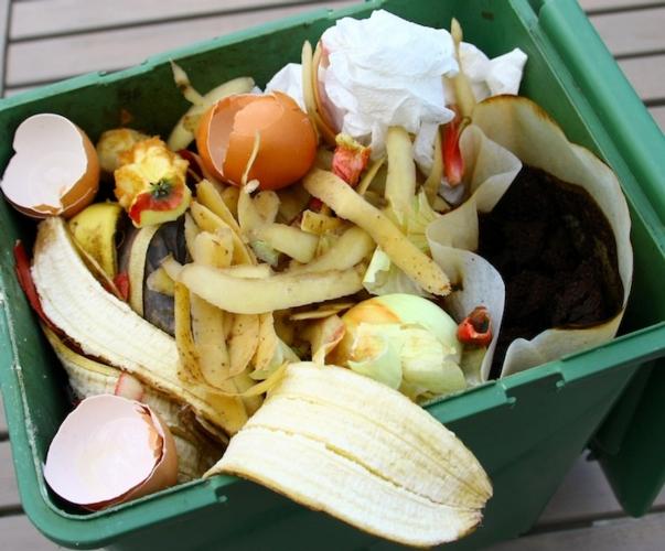 spreco-cibo-pattume-rifiuti-patryssia-fotolia750x622