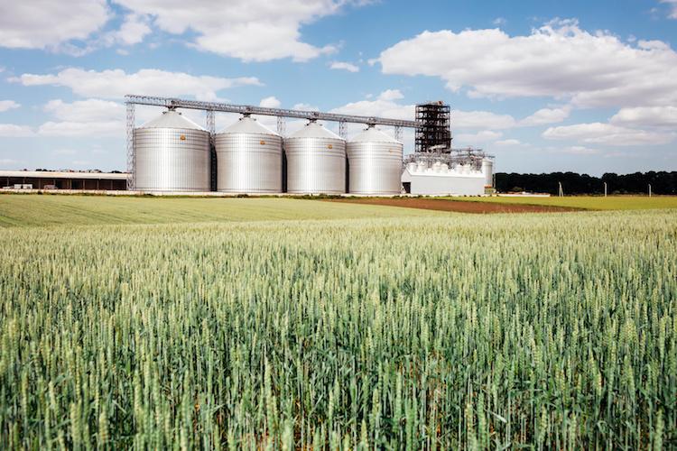 stoccaggio-cereali-750-fonte-foto-mykola-fotolia