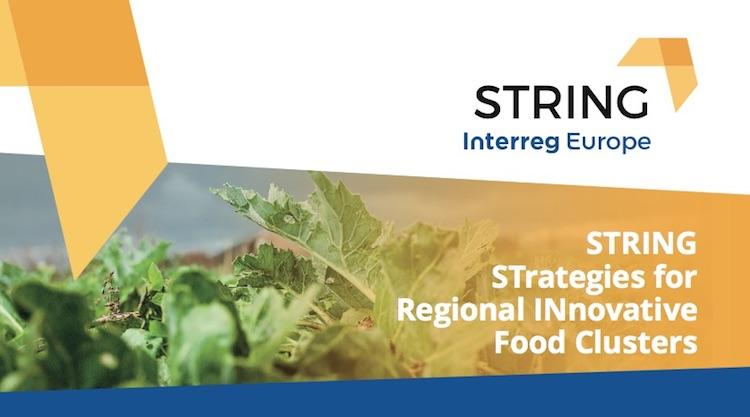string-interreg-europe