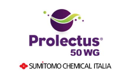 sumitomo-prolectus-50-wg-logo
