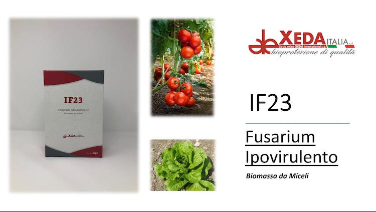 suoli-sopressivi-per-le-fusariosi-if23-fonte-xeda