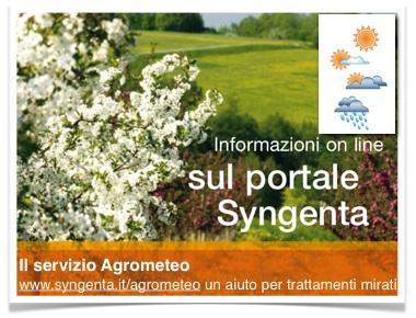 syngenta-agrometeo-informazioni-portale-380.jpg