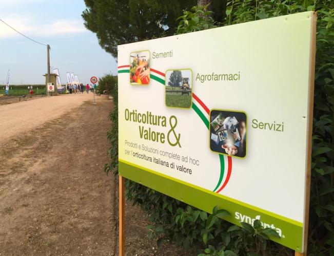 syngenta-in-campo-2016-orticoltura-e-valore-marchio
