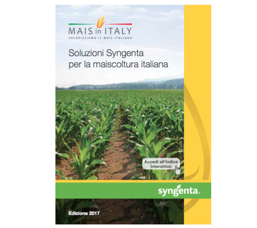 syngenta-mais-in-italy
