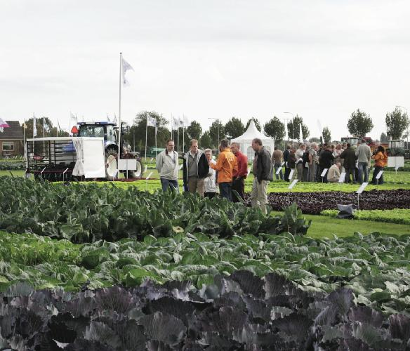 syngenta-open-field-demo-days2009