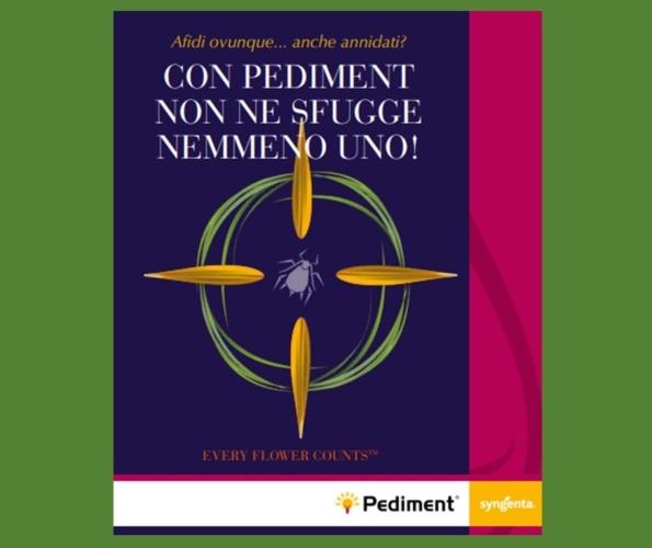 syngenta-pediment-2021.jpg