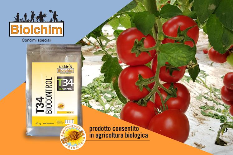 t34-biocontrol-fonte-biolchim.png