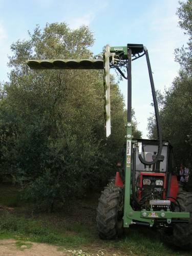 tanesini-macchine-olivo-orchard-trimmer