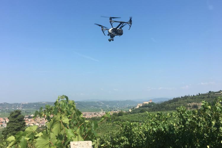terrasharp-drone-vigna-750
