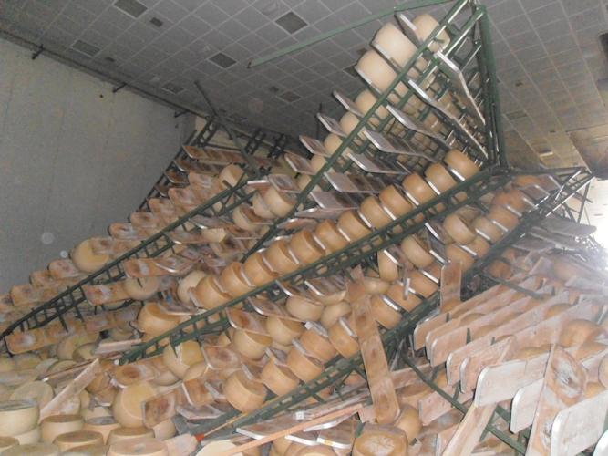 terremoto-confcooperative