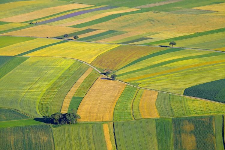 terreni-agricoli-terreno-campi-campo-agricoltura-by-gudellaphoto-adobe-stock-750x500