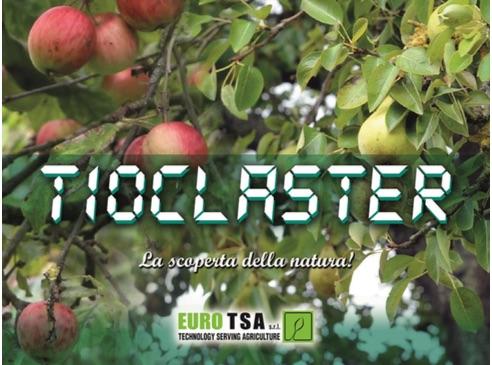 tioclaster-euro-tsa-fonte-tsa.jpg