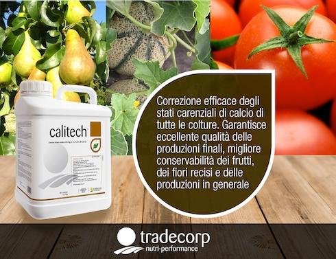 tradecorp-calitech-2016