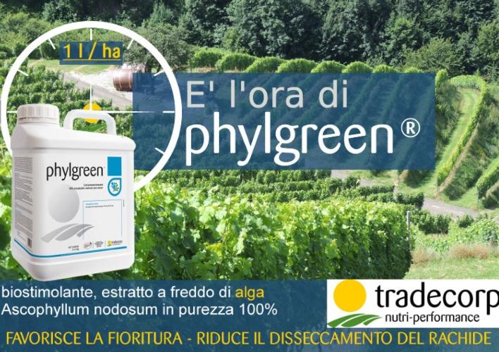 tradecorp-phylgreen-tanica.jpeg