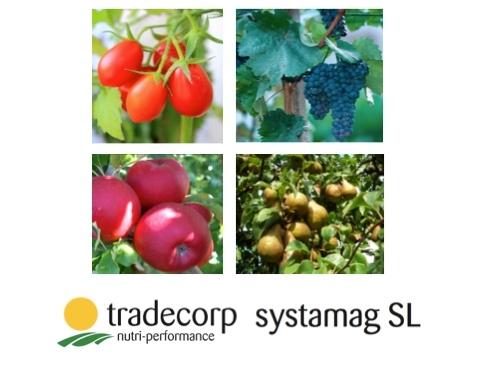 tradecorp-systamag-apertura