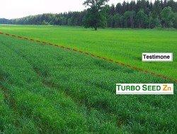 tradecorp_turboseedzn_frumentoorzo1