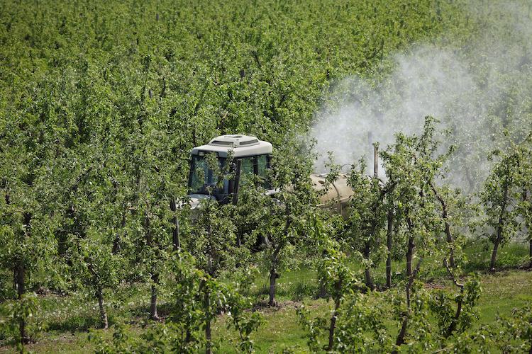 trattore-macchine-agricole-agrofarmaci-in-meleto-by-sima-adobe-stock-750