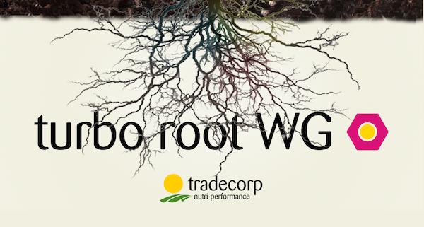 turbo-root-wg-fonte-tradecorp