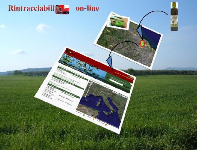 unasco-rintracciabilita-olivo-olio-on-line-700.jpg