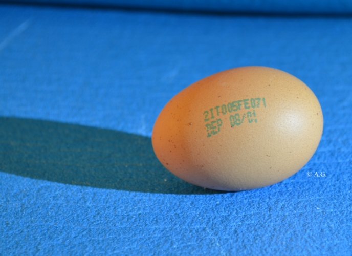 uovo-etichetta-ag