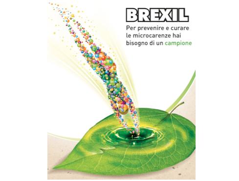 valagro-brexil-apertura-2017