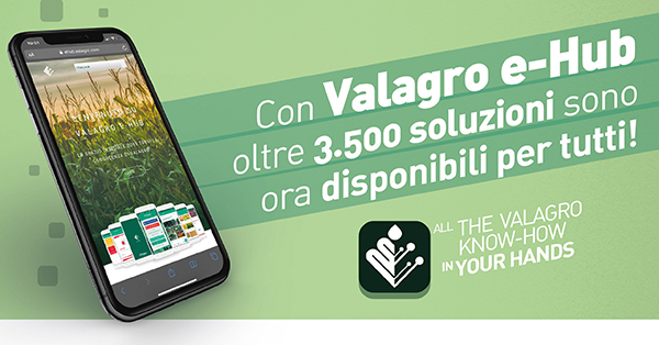 valagro-e-hub-fonte-valagro.jpg