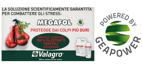 valagro-megafol-geapower