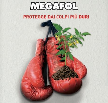 valagro-megafol-guantoni-2016