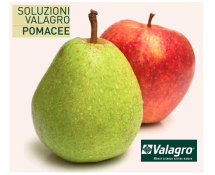 valagro-soluzioni-pomacee.png