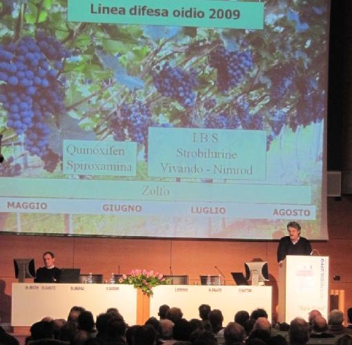 vallagarina-iasma-incontro-tecnico-viticoltura-annata-2009.jpg
