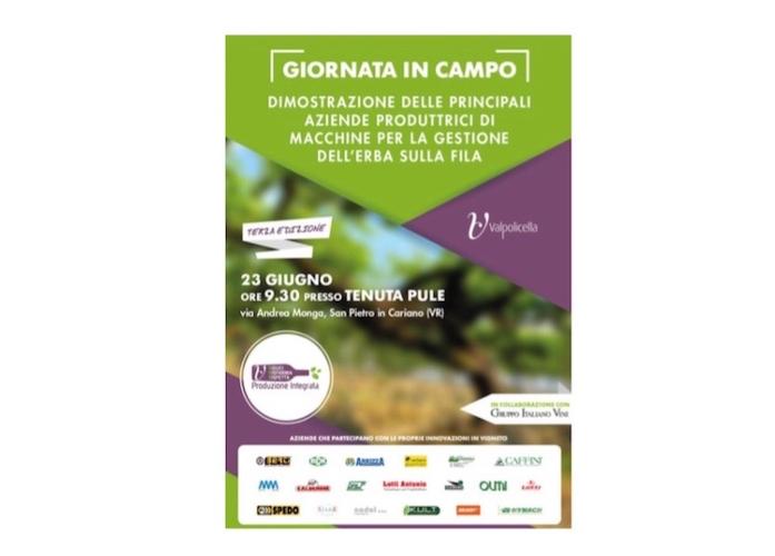 valpolicella-gioranta-in-campo-20160617