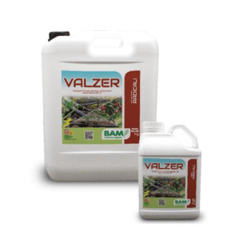 valzer-biostimolante-alghe-erba-medica-febb-2021-fonte-bam