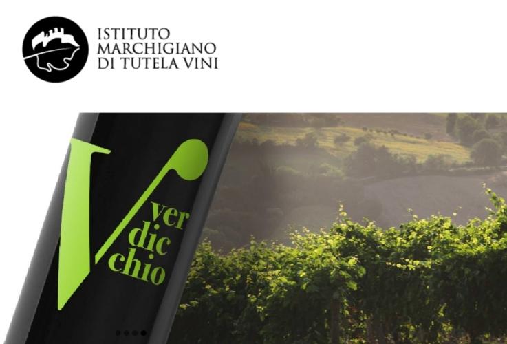 verdicchio-bottiglia-vino-by-imt-jpg