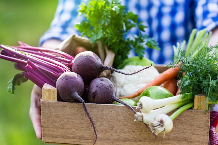 verdure-ortaggi-freschi-orticole-by-istetiana-fotolia-750x500.jpeg