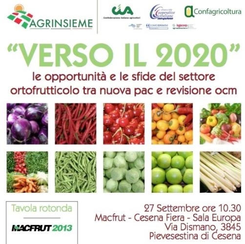 verso-il-2020-convegno-agrinsieme-macfrut-2013