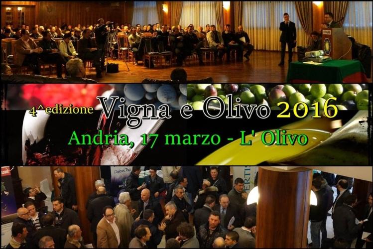 vigna-e-olivo-2016-andria-olivo-17-mar-2016.jpg
