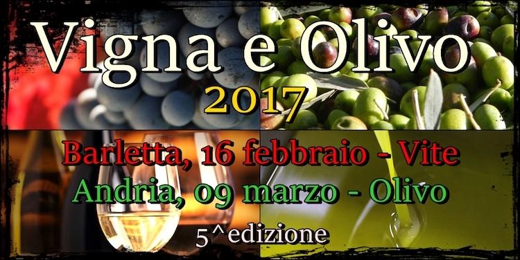 vigna-e-olivo-2017.jpg
