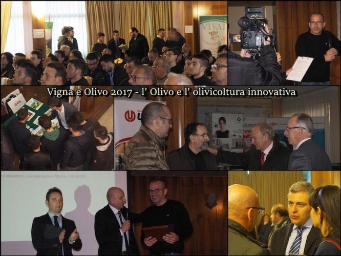 vigna-e-olivo-20170309-andria-fonte-arptra