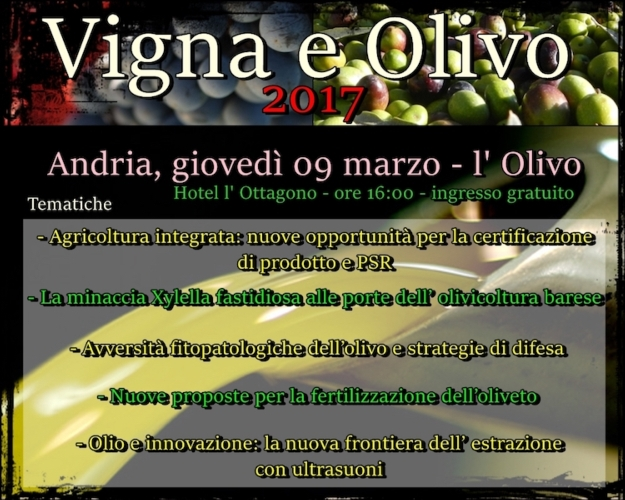 vigna-e-olivo-andria-9-marzo-2017-olivo-tematiche