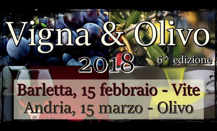 vigna-olivo-2018.jpg