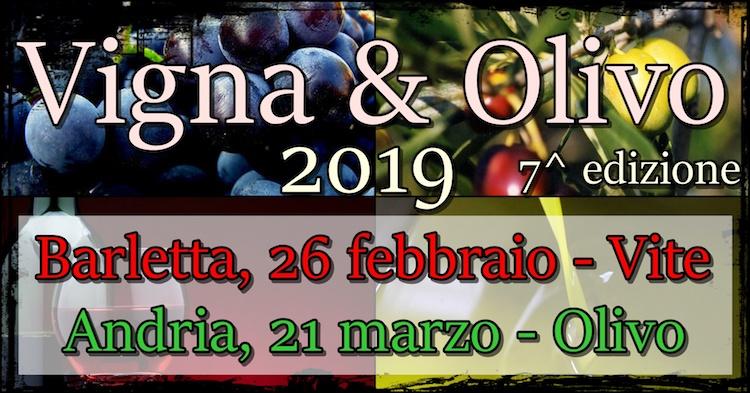 vigna-olivo-2019-750x393.jpeg