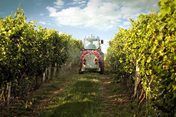 vigneto-macchine-agricole-by-rostislav-sedlacek-adobe-stock-750x500.jpeg
