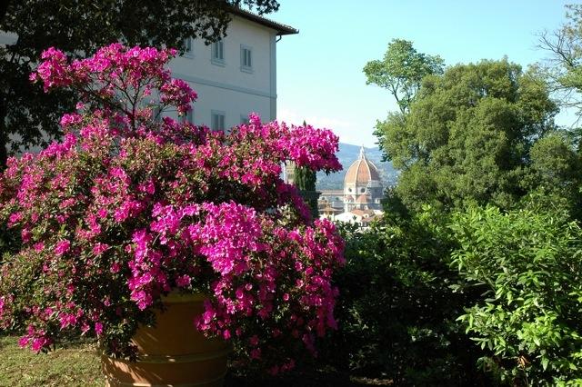 villa-bardini-georgofili-corso-giardinaggio-dic2011
