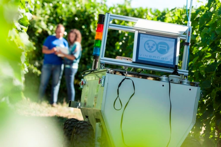 vinerobot-3.jpg