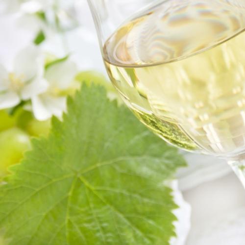 vino-bianco-bicchiere-foglia-vite-by-photo-sg-fotolia-750