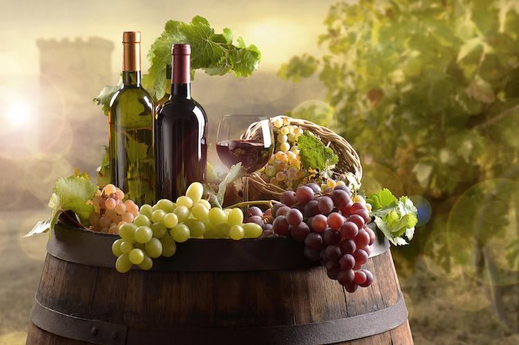 vino-bottiglie-vigneto-vite-uva-filiera-by-pfpgroup-adobe-stock-750x499.jpeg