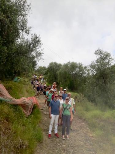 visita-negli-oliveti-nel-borgo-di-torre-paponi-liguria-giu-2019-fonte-fondazione-qualivita