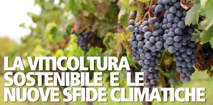 viticoltura-sostenibile-nuove-sfide-climatiche-convegno-evento-fonte-biogard.png