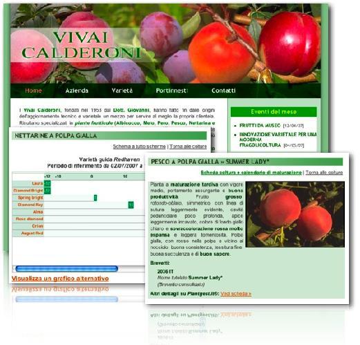 vivai-calderoni-vivaismo-frutticolo-siti-internet