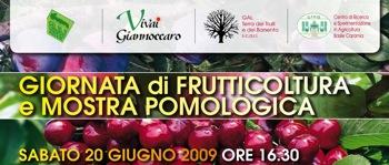 vivai-giannoccaro-giornata-frutticola-mostra-pomologica-copertina.jpg